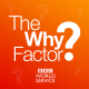 The Why Factor graphic