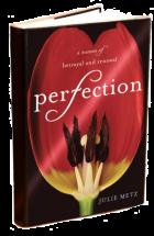 PerfectionBookSIlo